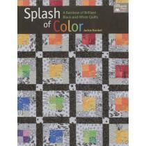 Splash Of Color Quilt Book